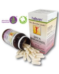 hafesan DHEA* Yam Root 400 mg Capsules